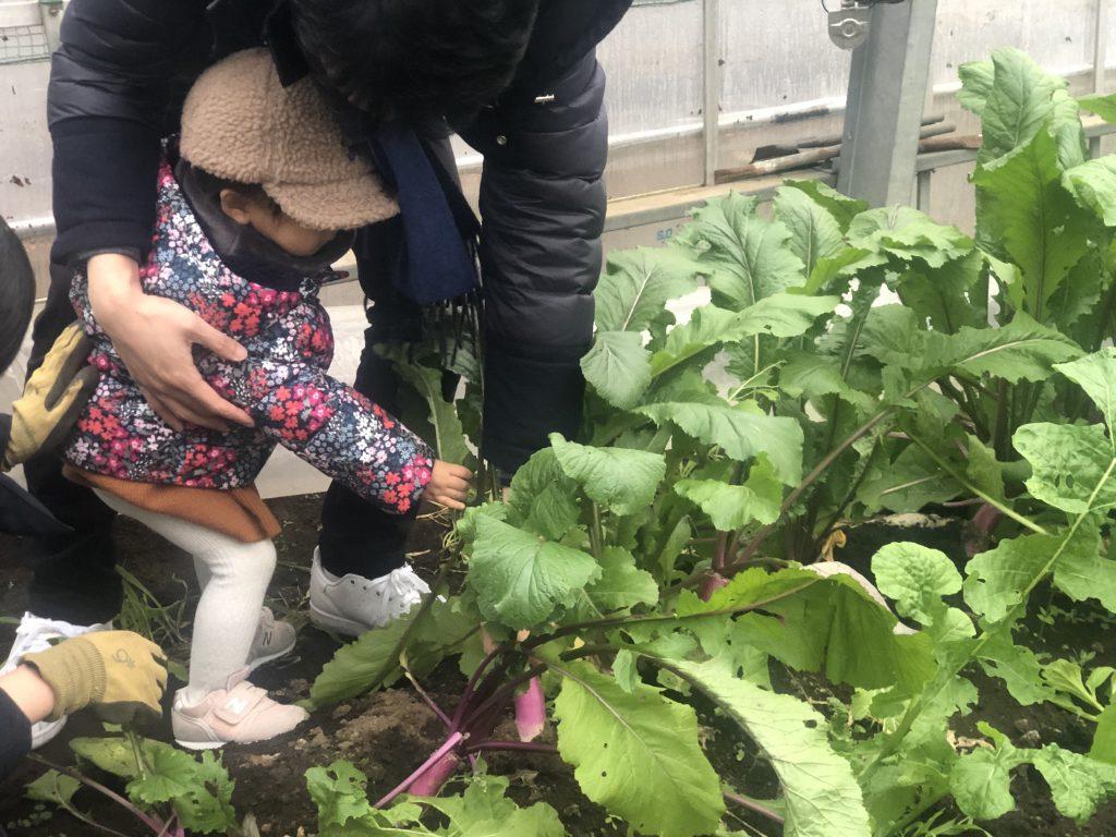 リゾナーレ那須で農作業